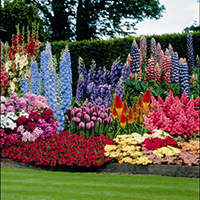 Superb Exceptionnel Flower Garden Planning
