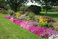 Flower Garden Landscaping Ideas