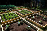 Raised Bed Landscaping Ideas