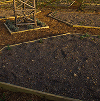 Raised Garden Soils