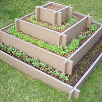 Raised Strawberry Beds