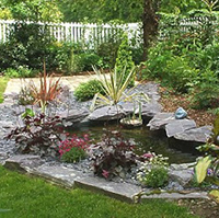 Rock Garden Design Ideas Design