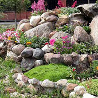 1001 Landscaping Ideas