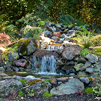 Rock Garden Waterfalls