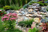Garden Layouts Landscaping Ideas