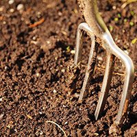 Preparing Soil for Vegetable Gardens